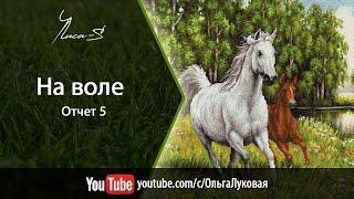 """Luka-S """"На воле"""" (В524)  - СП """"В мире животных"""" - отчет №5"""