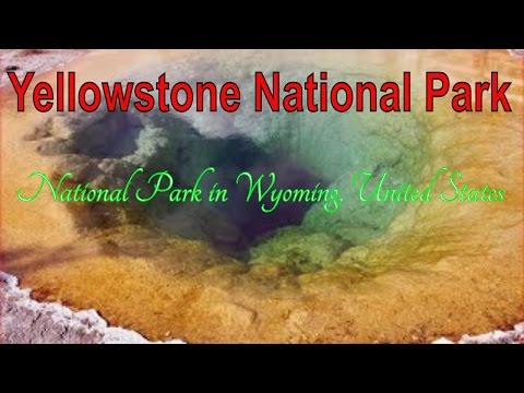 Visit Yellowstone National Park, National Park in Wyoming, United States