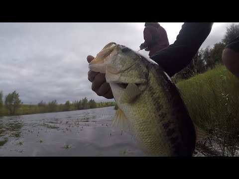 Finding NEW PONDS For Bass Fishing!!