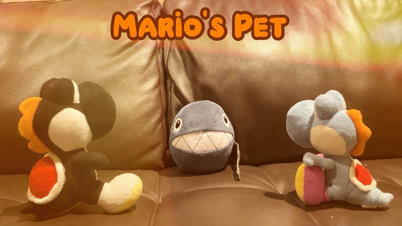 Mario's Pet