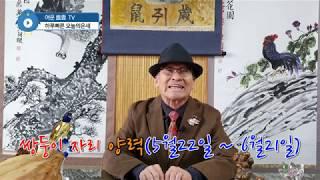 2020년 쌍둥이자리 별자리 운세 경자년 점성술 토정비결