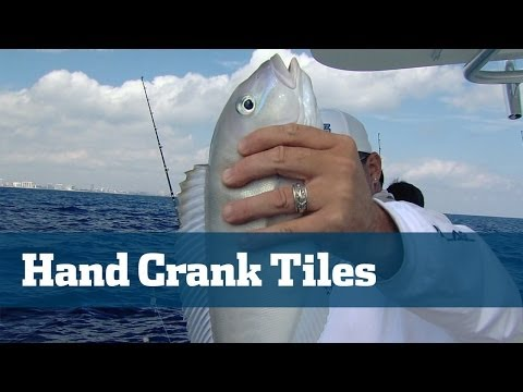 Gray Tilefish Deep Drop Tackle Techniques - Florida Sport Fishing TV