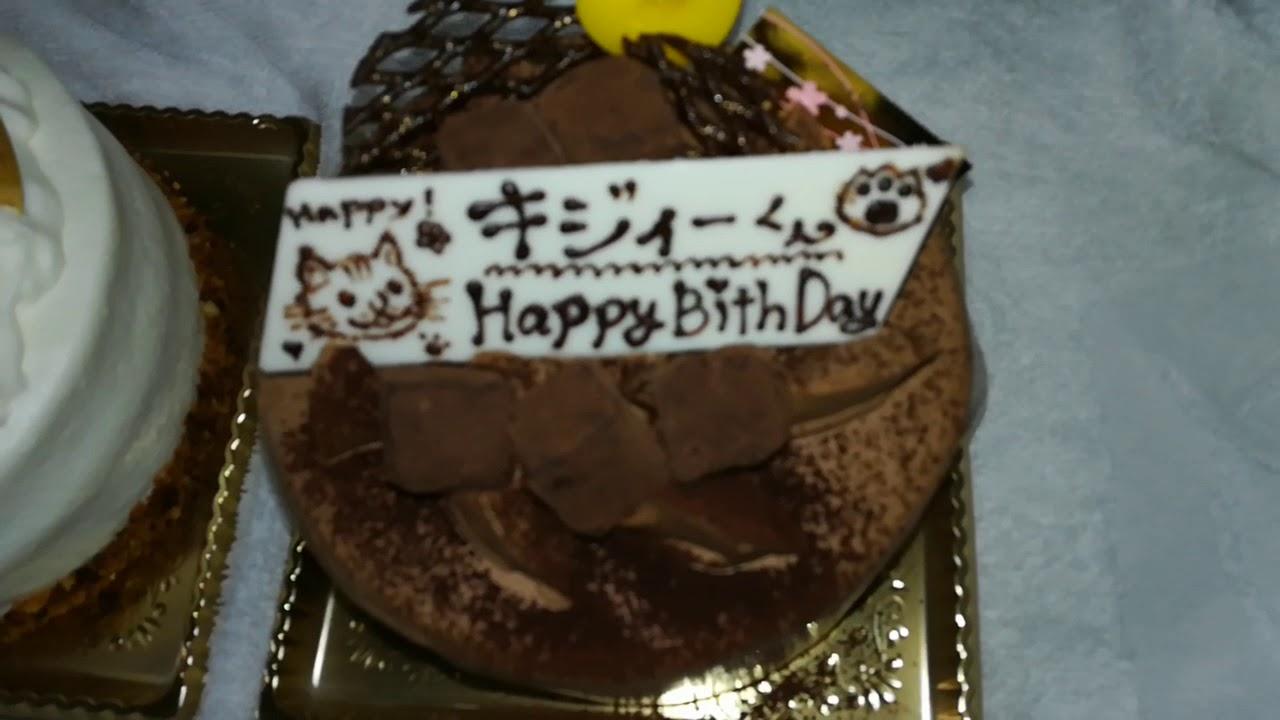 次男猫科の5歳のお誕生日です。。