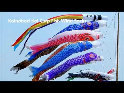 Koinobori Koi Carp Wind Sock