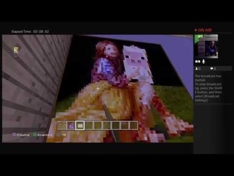 Smallcreeper gameplay Hello neighbor alpha 3  in minecraft
