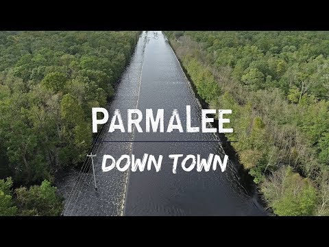 Parmalee – Down Town (Hurricane Florence Relief Song) Lyric Video