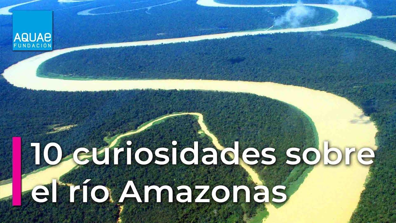 Lo Que Debes Saber Sobre El Río Amazonas Fundación Aquae