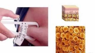 03-Узнай себя, чтобы похудеть раз и навсегда
