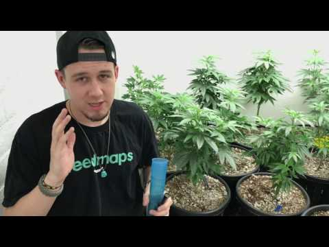 Different ways to medicate with medical marijuana/Cannabis