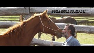 Doma India Scarpati de Caballos - TvAgro por Juan Gonzalo Angel