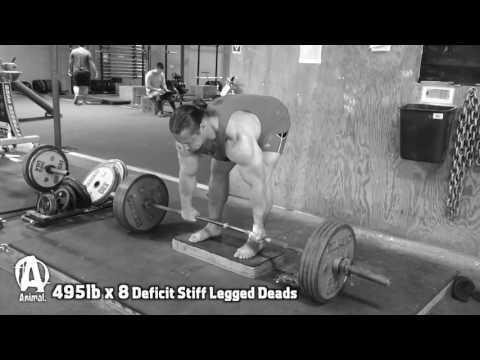 """The Animal Underground: Dan """"BOSS"""" Green Squats, Deads, and Bench Work"""