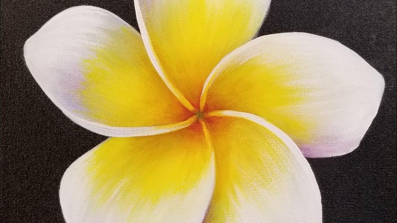 Plumeria Flower Acrylic Painting LIVE Tutorial - YouTube