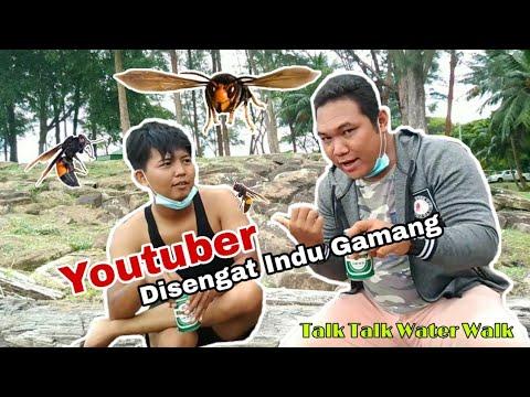 Download Youtuber disengat indu gamang
