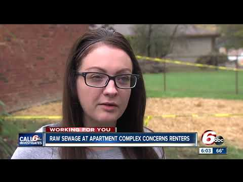 Floating feces at Indianapolis apartment complex results in health citation