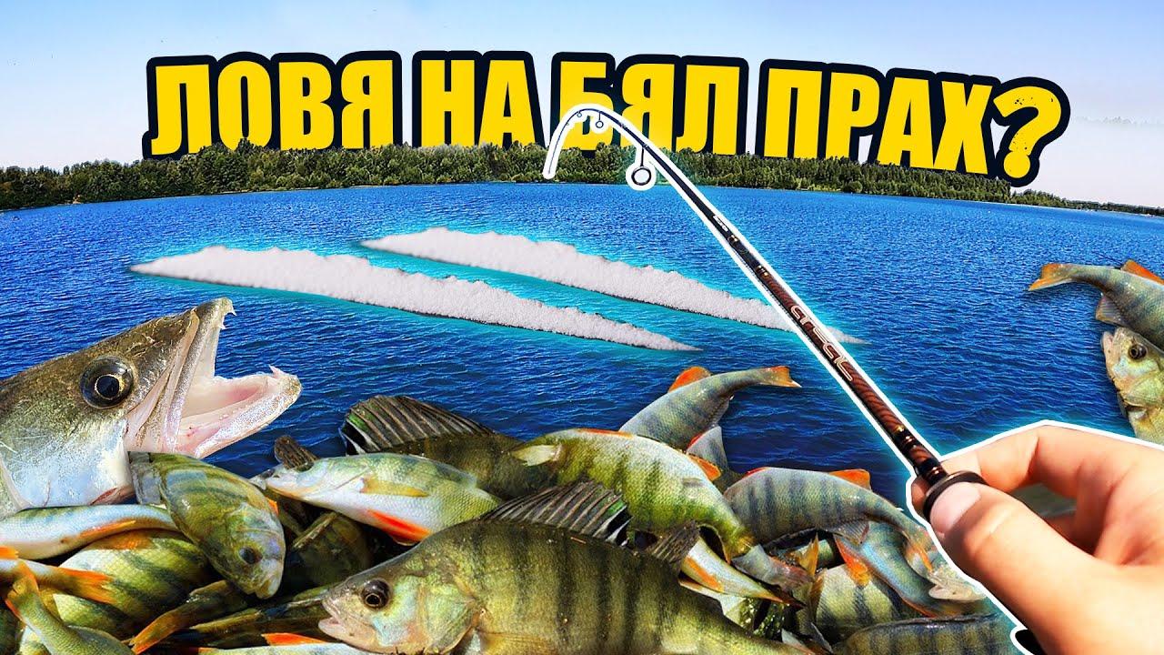 ПОВРЪЩАТ РИБИ ,но монтажът УБИЕЦ ГИ СЦЕПИ!!! Риболов на костур, бяла риба, скобар на яз. г.Дъбник