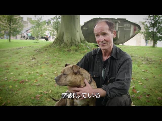 捨て犬が『トランスフォーマー』第5弾に出演!泣ける特別映像