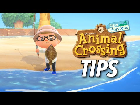 Animal Crossing: New Horizons Tips | Kotaku