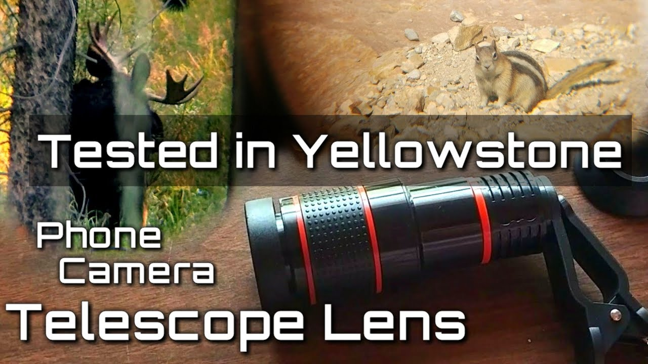 Filming Wildlife with Smartphone 12x Zoom Telescope Phone Camera Lens from  Amazon: Does it Work?