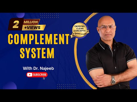 Complement System - Immune System