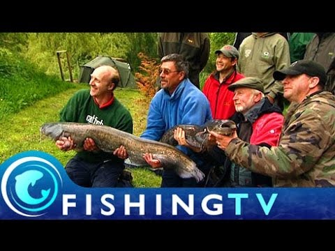 Catfish Challenge  - Fishing TV