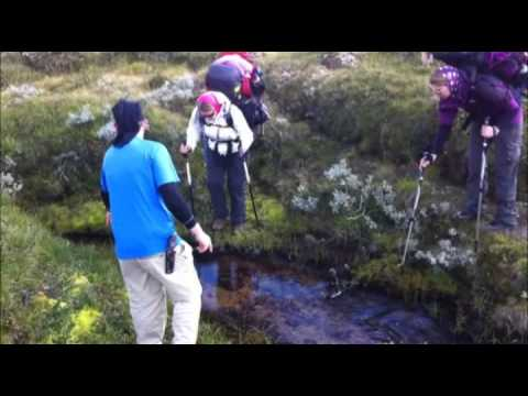Trekking im Dovrefjell