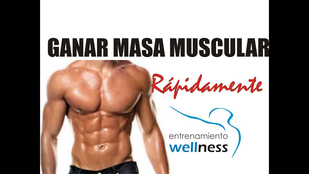 dieta para reducir grasa corporal sin perder musculo