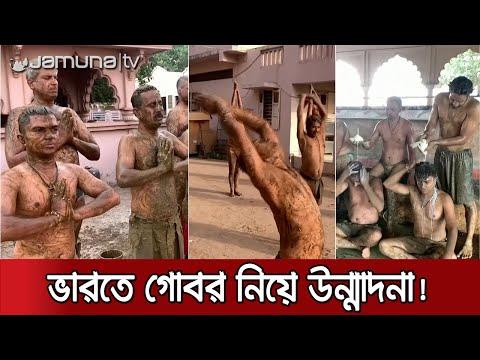 গোবর গায়ে মাখলেই দূর হবে করোনা! ভারতীয় চিকিৎসকদের উল্টো হুঁশিয়ারি | India Cow Dung