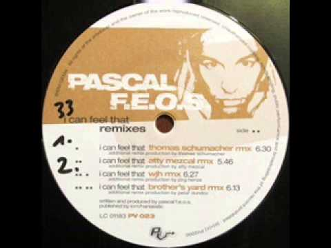 Download Pascal F.E.O.S. - I Can Feel That (WJH Remix)