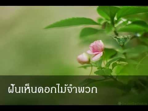 ฝันเห็นดอกไม้จำพวก หมายถึงอะไร (เลขเด็ด)