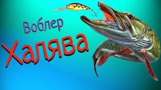 ШОК для спиннингиста Воблер -Халява