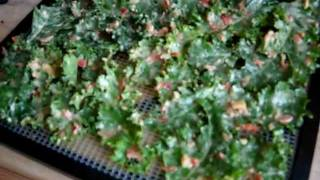 Pizza Kale Chips Preview ~ Vid#61