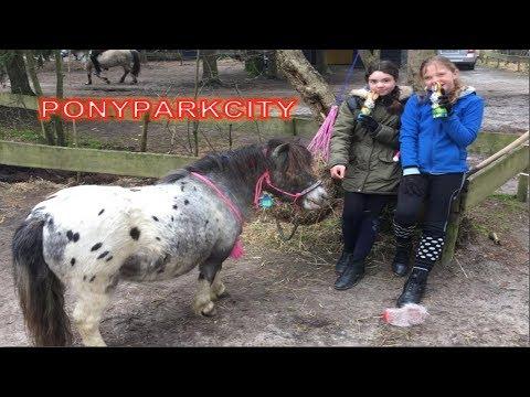 PPC   PonyParkCity   april 2018