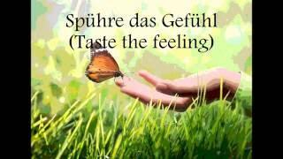 Avicii vs Conrad Sewell - Taste the Feeling ( lyrics deutsch)