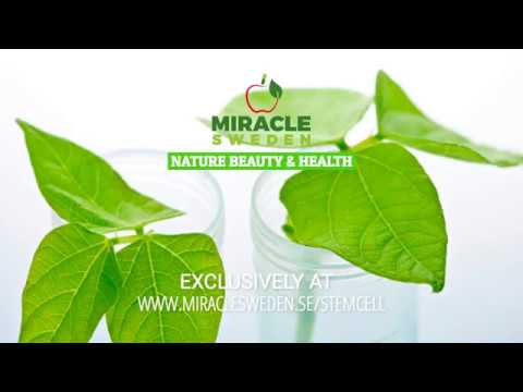 Miracle Sweden - Nature Beauty & Health