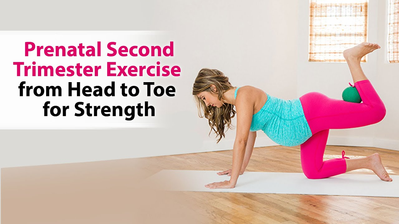 Prenatal Second Trimester Exercise From Head To Toe For Strength