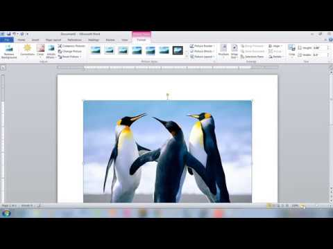 How To Insert And Move A Picture In Word 2007/ 2016: Pictures And Text Wrapping