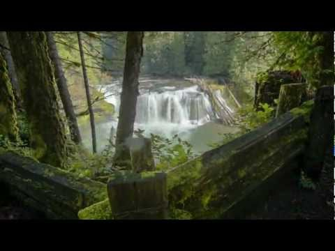 Visit Your Pacific Northwest National Forest