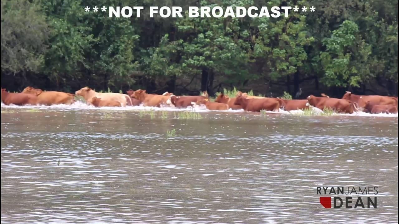 9-9-16 Mulvane, KS Flash Flooding Pt  1 & 2