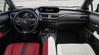 2019 Lexus UX 250h Interior Options