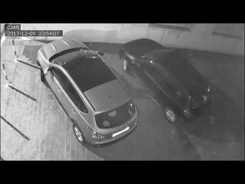 Manfredonia ladri che fanno la pipì
