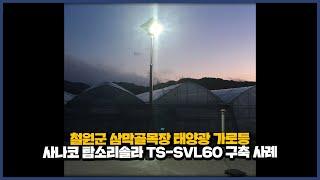 철원군 삼막골목장 태양광 가로등 사나코 탐소리솔라 TS…