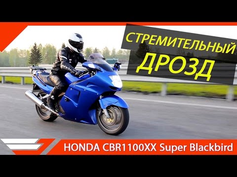 Некогда самый быстрый. HONDA CBR1100XX ТЕСТ-ДРАЙВ  от Jet00CBR