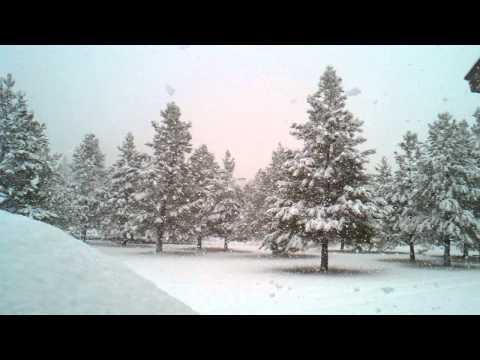 I love watching it snow...Athol Idaho