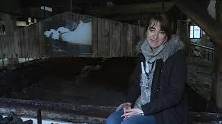 La saline de Salins-les-Bains, patrimoine mondial UNESCO depuis 10 ans