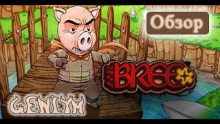 Обзор игры Mr Bree +