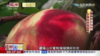 2018.07.22兩岸中國夢/陽山蜜桃「全球最讚」插吸管用喝的