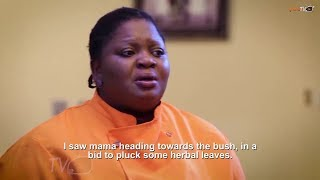 Omo Odo (House Help) Yoruba Movie 2019 Now Showing On ApataTV+