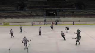 Хоккей ЛНХЛ Ударник-Антикор 08.02.2018 г. 3 пер. Пермь
