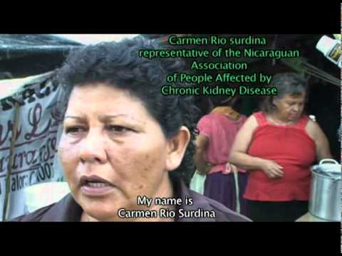 Agrofuels, Monocultures and Territory in Central America Eng Sub
