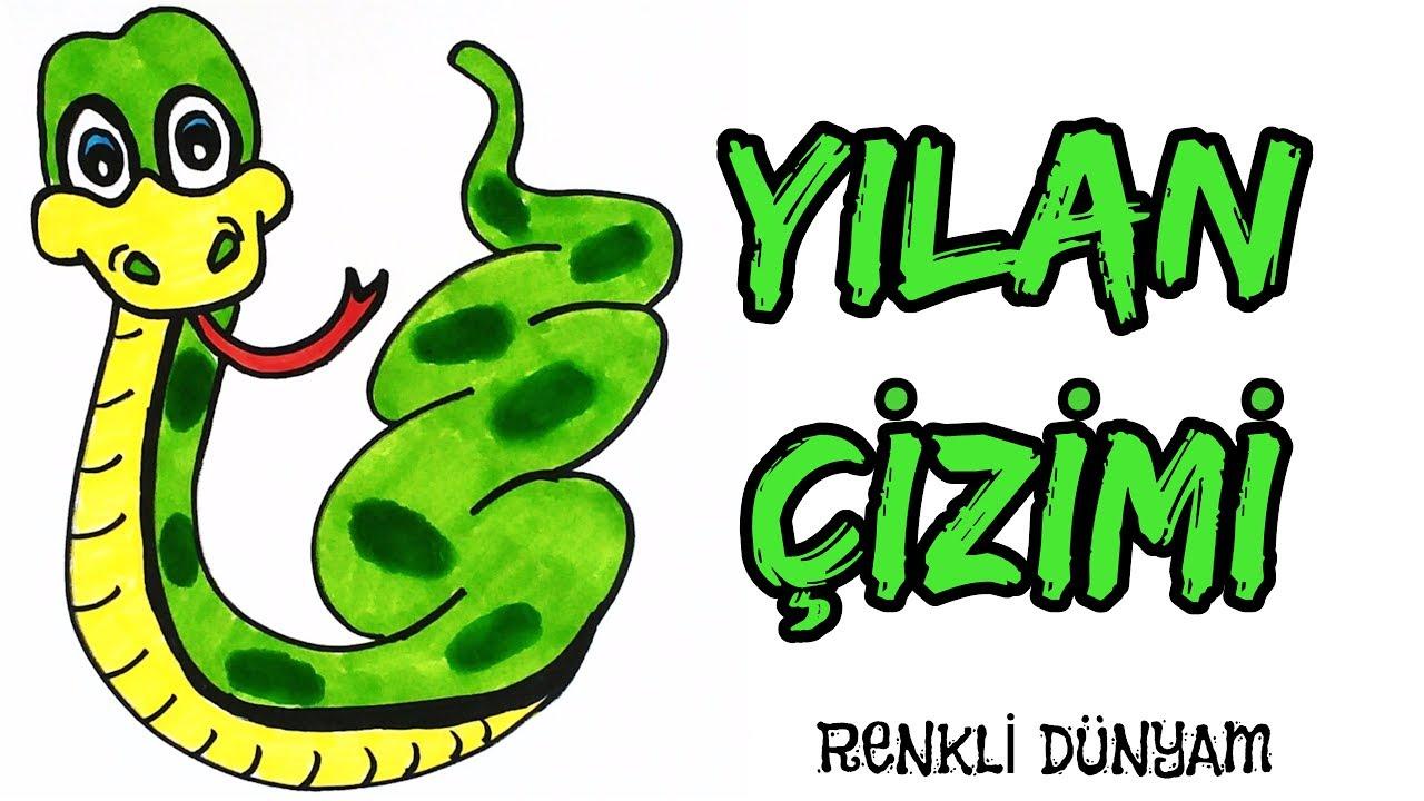 Yilan Nasil Cizilir Yilan Cizimi How To Draw A Snake Renkli